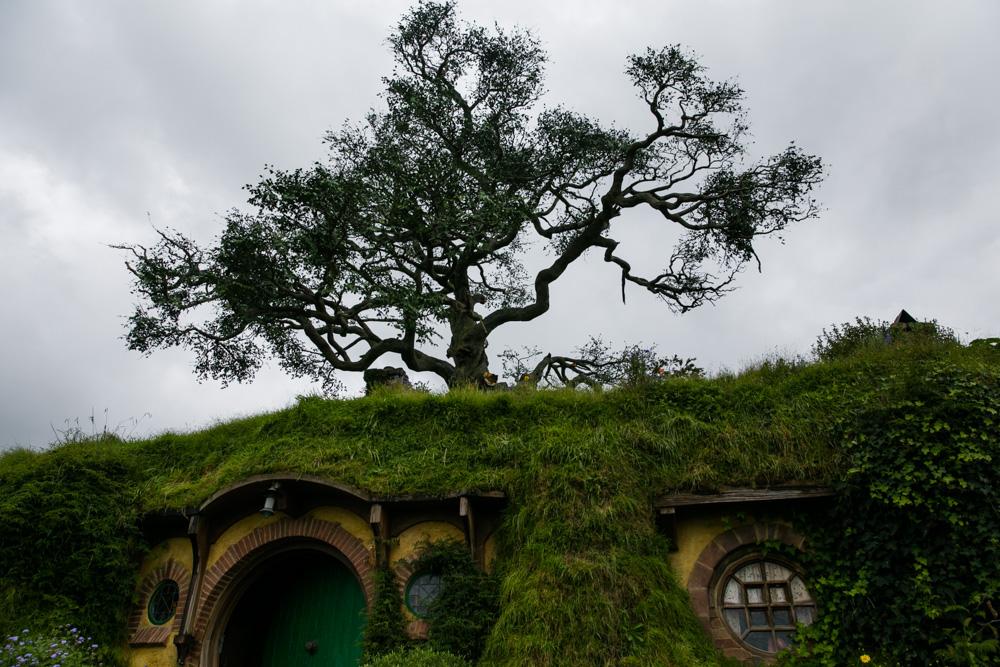 Hobbiton (12 of 27)