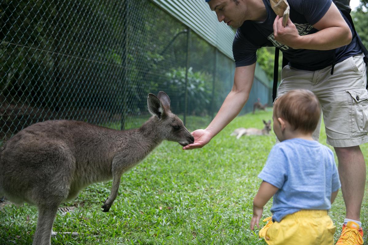 Australia Zoo-23
