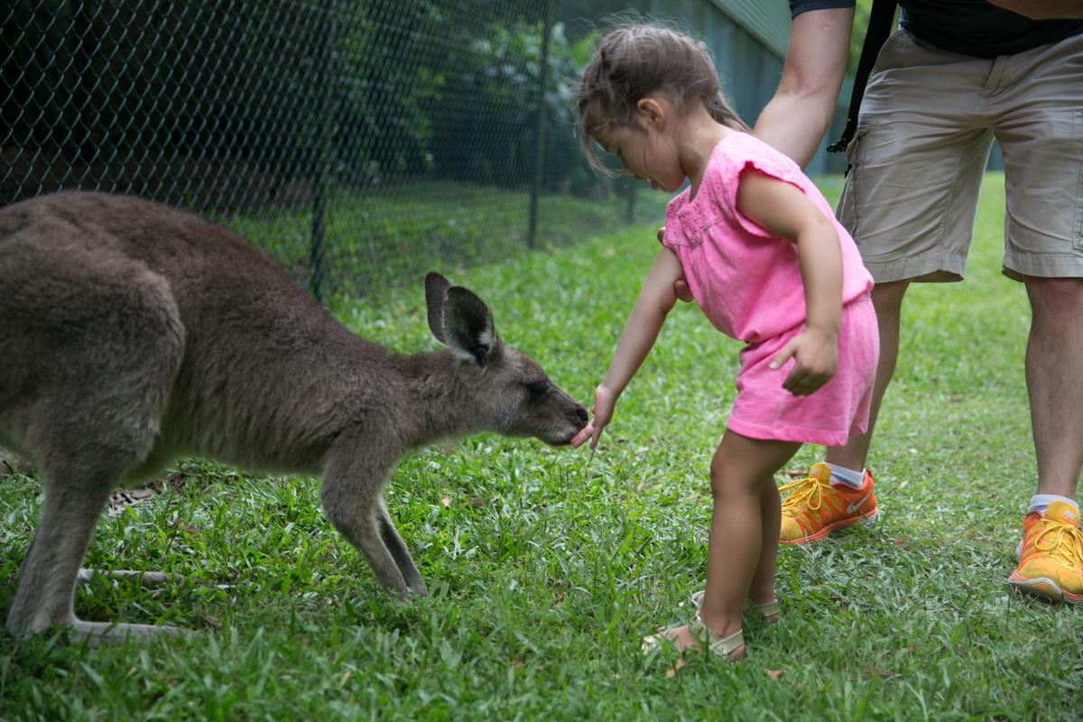 Australia Zoo-24