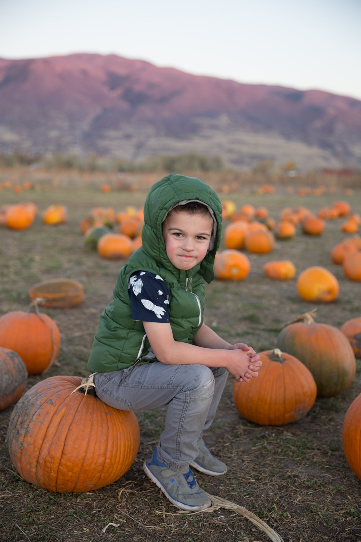 2017 Pumpkin Patch-4